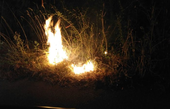Incendio lungo la SP87, fiamme lambiscono le abitazioni