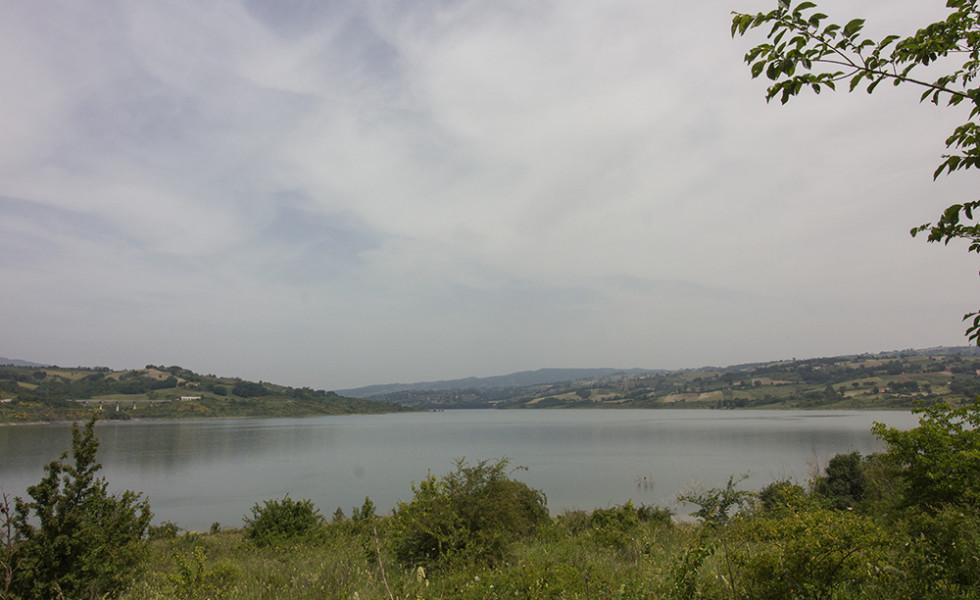oasi WWF - Il lago