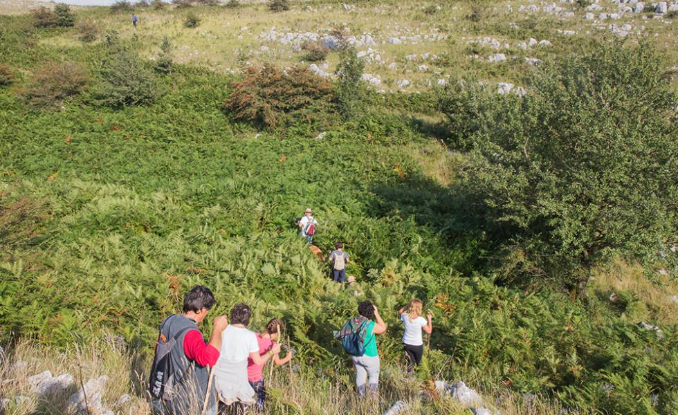 escursione a monte calvello (109)