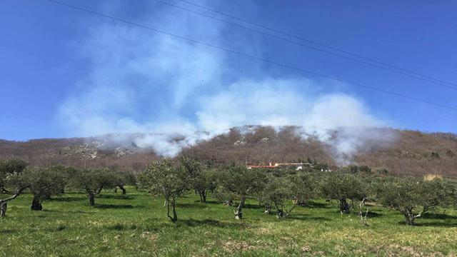 Sassinoro, in fiamme alberi e sterpaglie: pompieri al lavoro