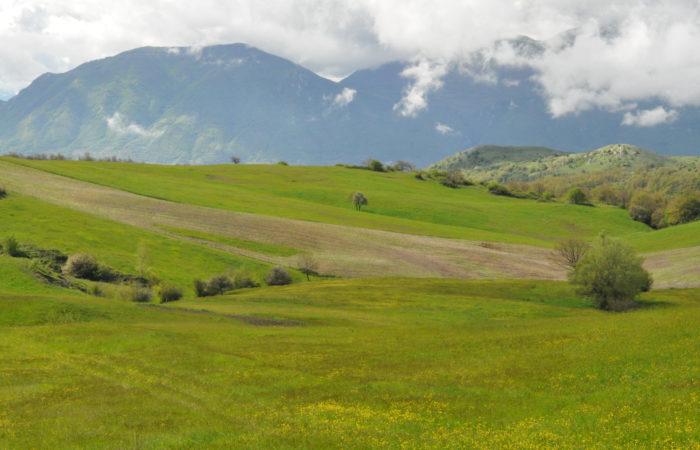 """WWF Sannio: finalmente uno stop all'eolico """"selvaggio""""; ora si faccia subito il Parco Nazionale del Matese"""