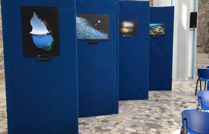 """Inaugurata la mostra """"I misteri del mondo sommerso"""", un viaggio tra gli oceani del pianeta"""